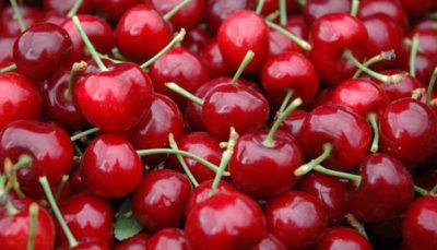 Las cerezas y sus beneficios para tu salud