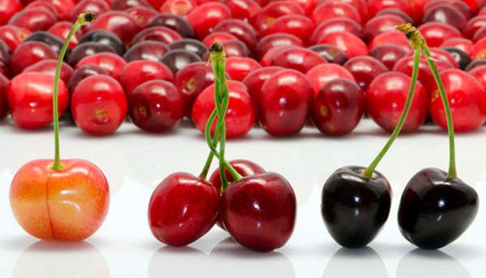 Como comprar cerezas y conservarlas adecuadamente