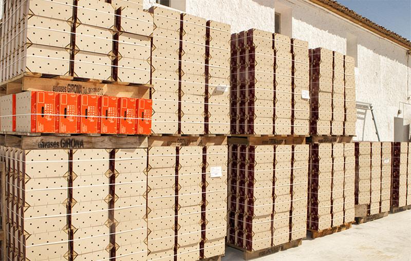 Envasado, almacenaje y conservación de fruta